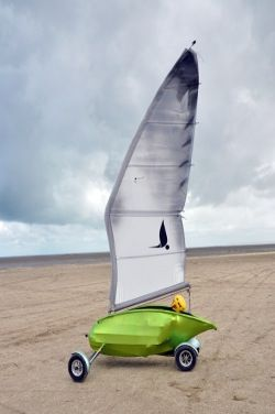 Seagull Chars A Voile